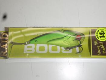 P1012093
