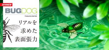 Bugdog_2000920_fix