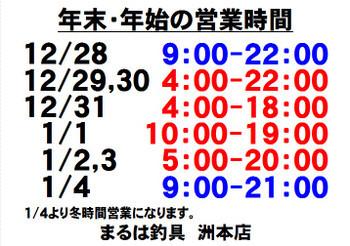Photo_16_3