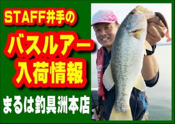 Photo_36_2