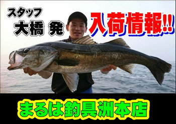 Photo_13_2