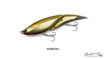 Kinbuna011200x677