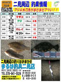 20161225futami