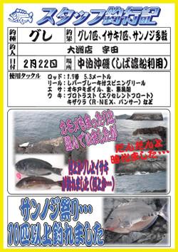 0222_large