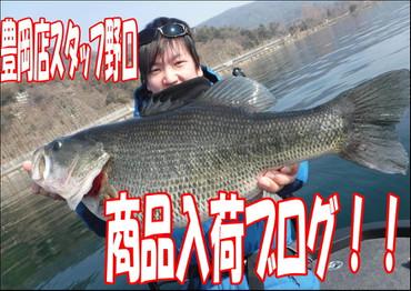 Photo_18