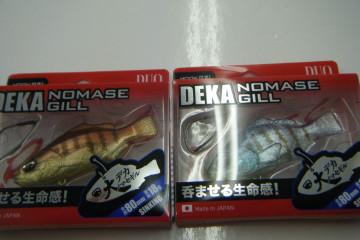 Dscf6968_small