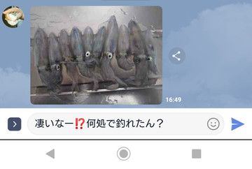 Screenshot_20191113163227