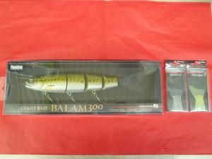 P1120027_small