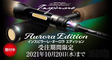 Eg_banner_auroraedition_medium