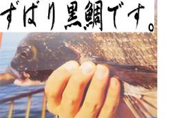 Foto_006_small