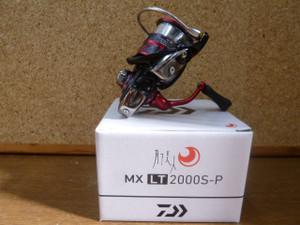 P1050572_small