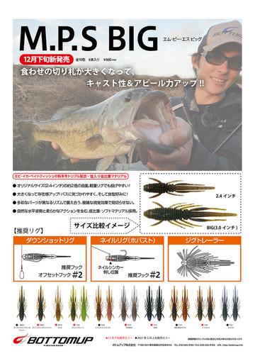 Mps_big_flyer2