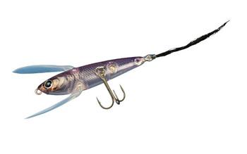 Img_color_reservejr_pinkfish